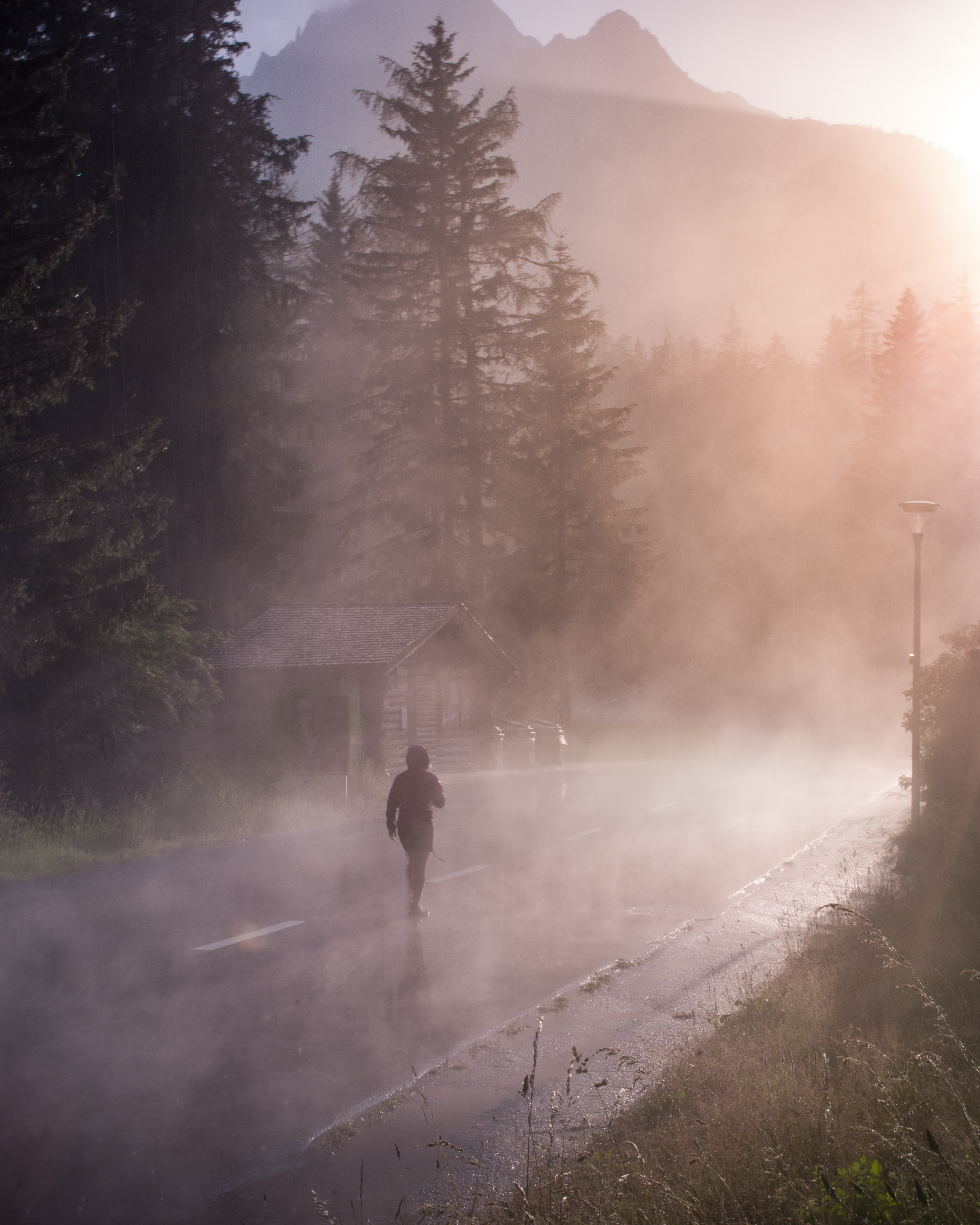 person walking in middle of misty road