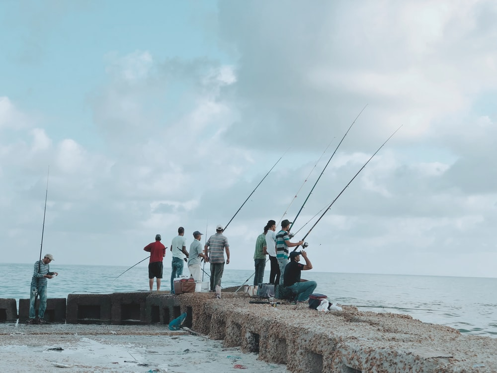 group of people fishing using fishing rods