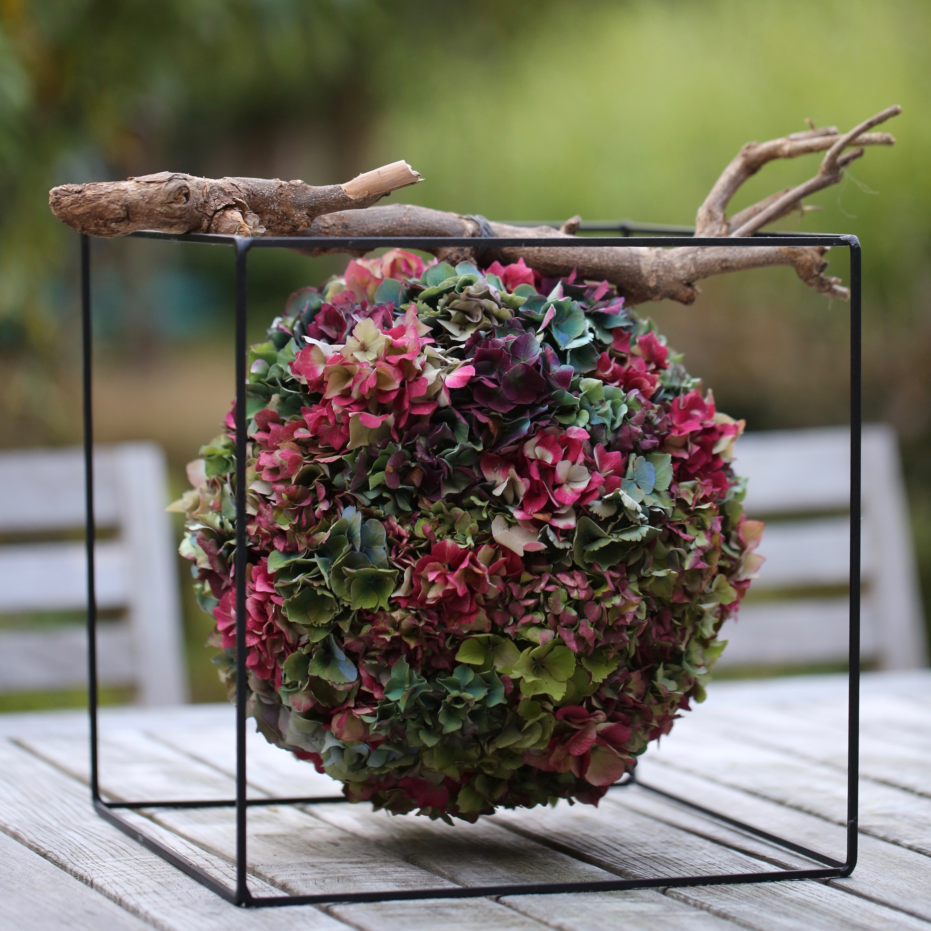 depth of field photography of multicolored petaled flower arrangement on under wood branch in black wired cube holder