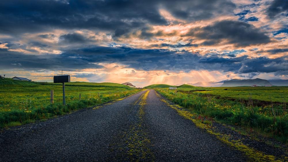 gray road between green farm
