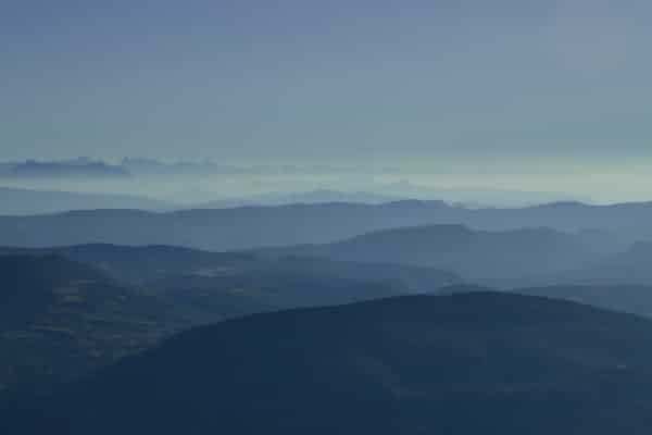 מיפוי הנוף: רמות של פרשנות העברה – סקירת מאמרה של פריסילה רות'