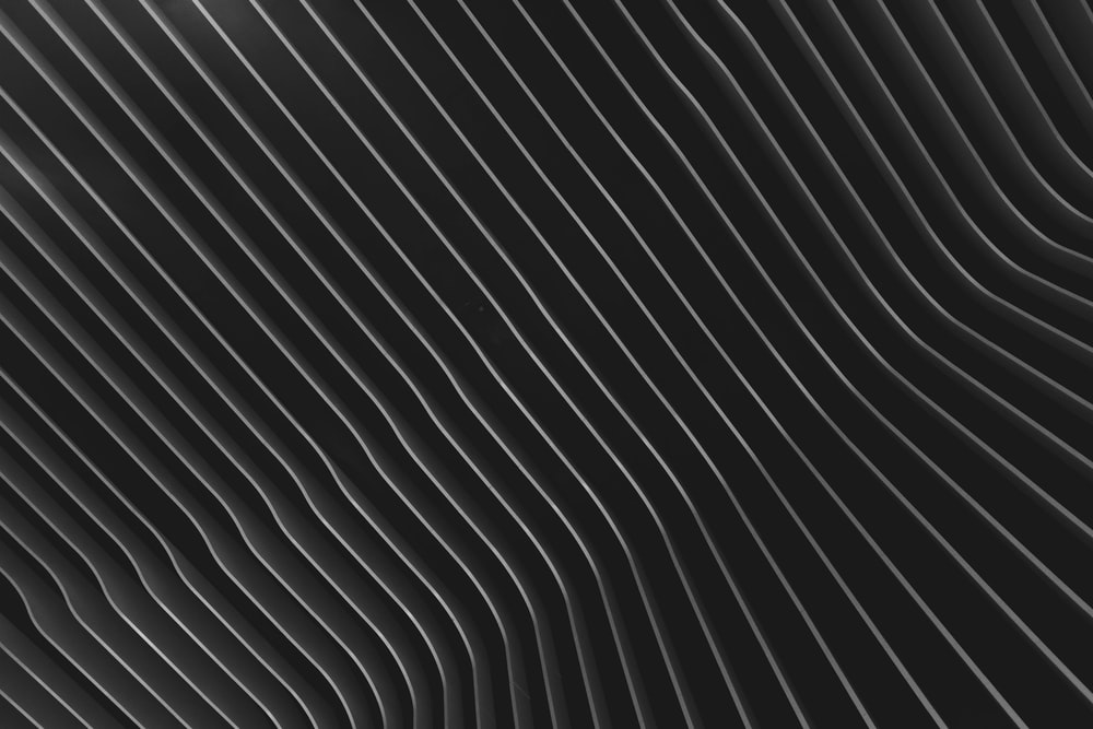 Black And White Lines Pictures Download Free Images On Unsplash