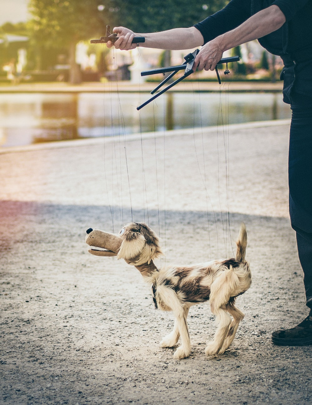 person playing puppet dog