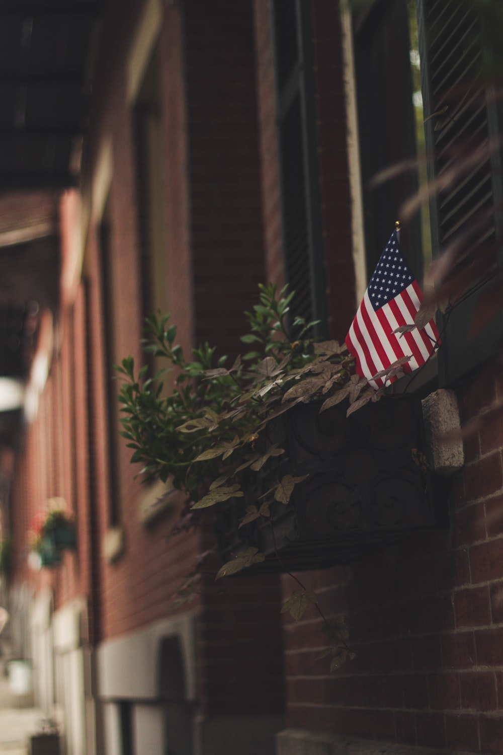 selective focus photo of American flag and leaf
