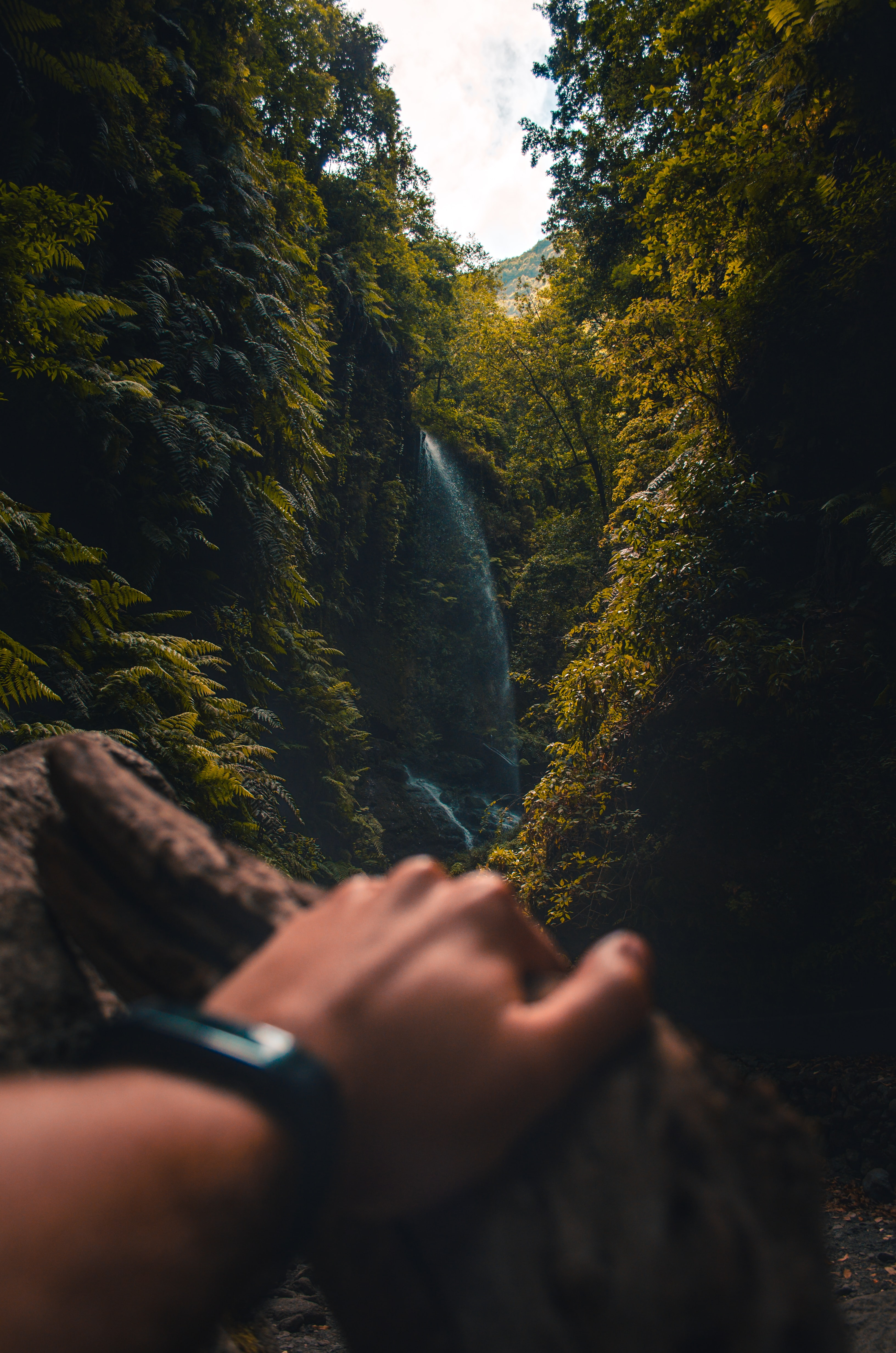 selective focus photography of waterfalls