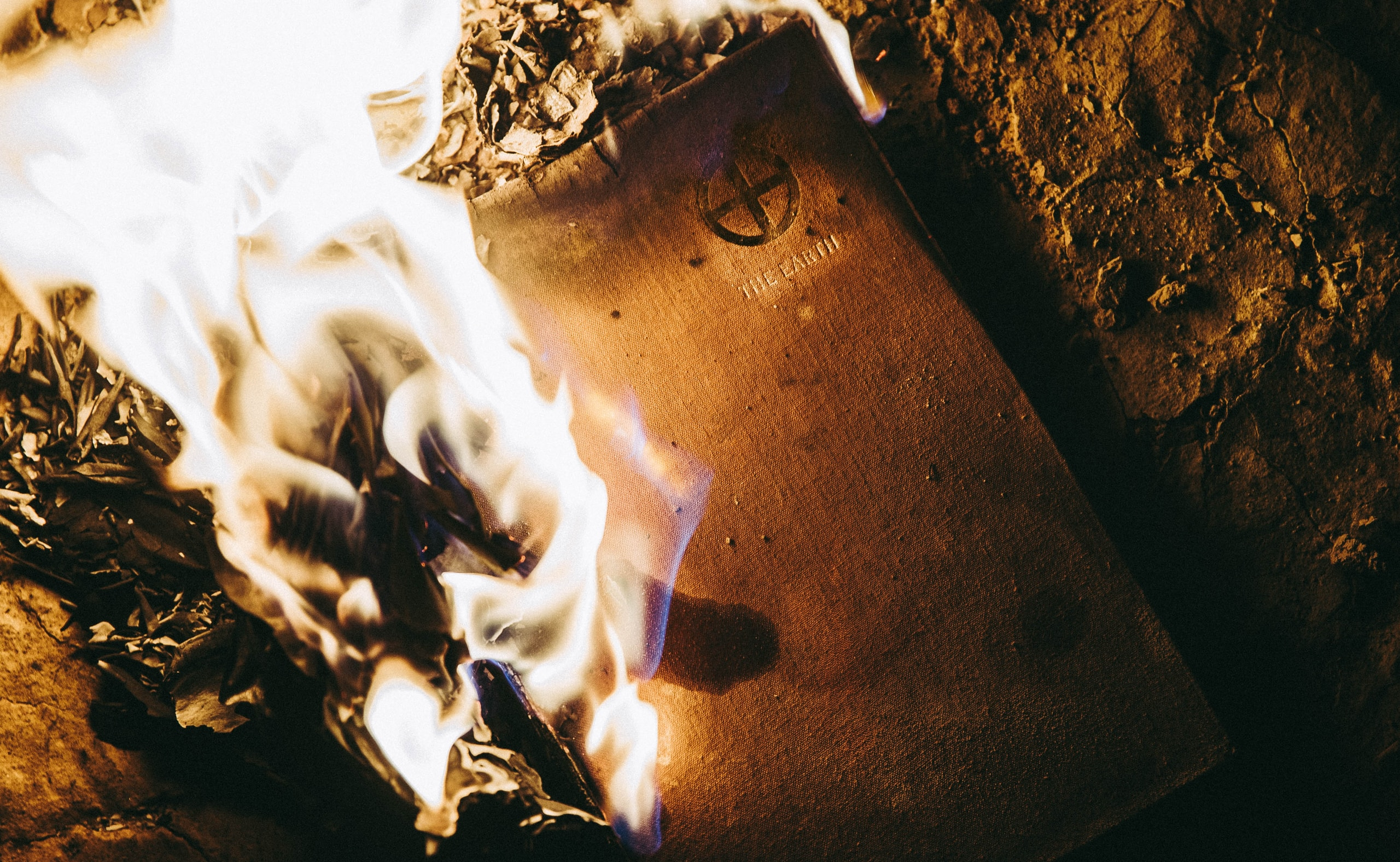 close-up photography of fire