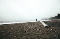 person walking on seashore at daytime