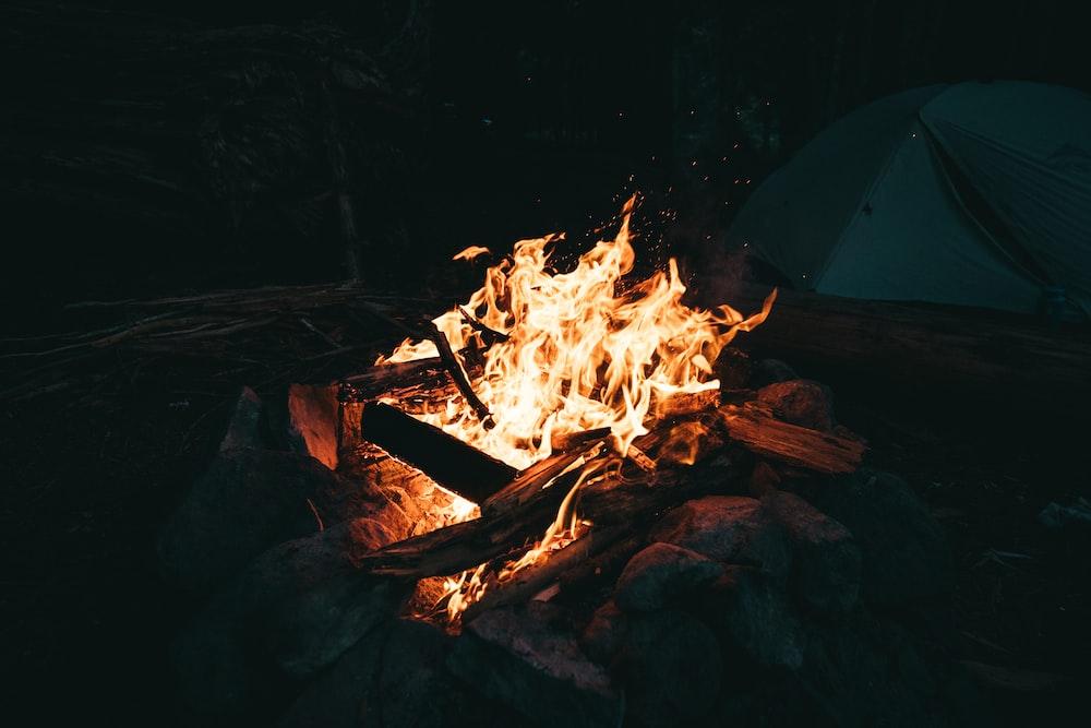firing wood