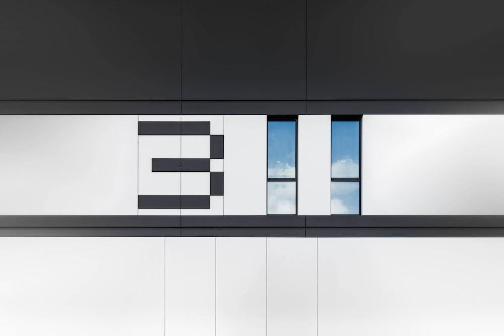 white and black 311 frame