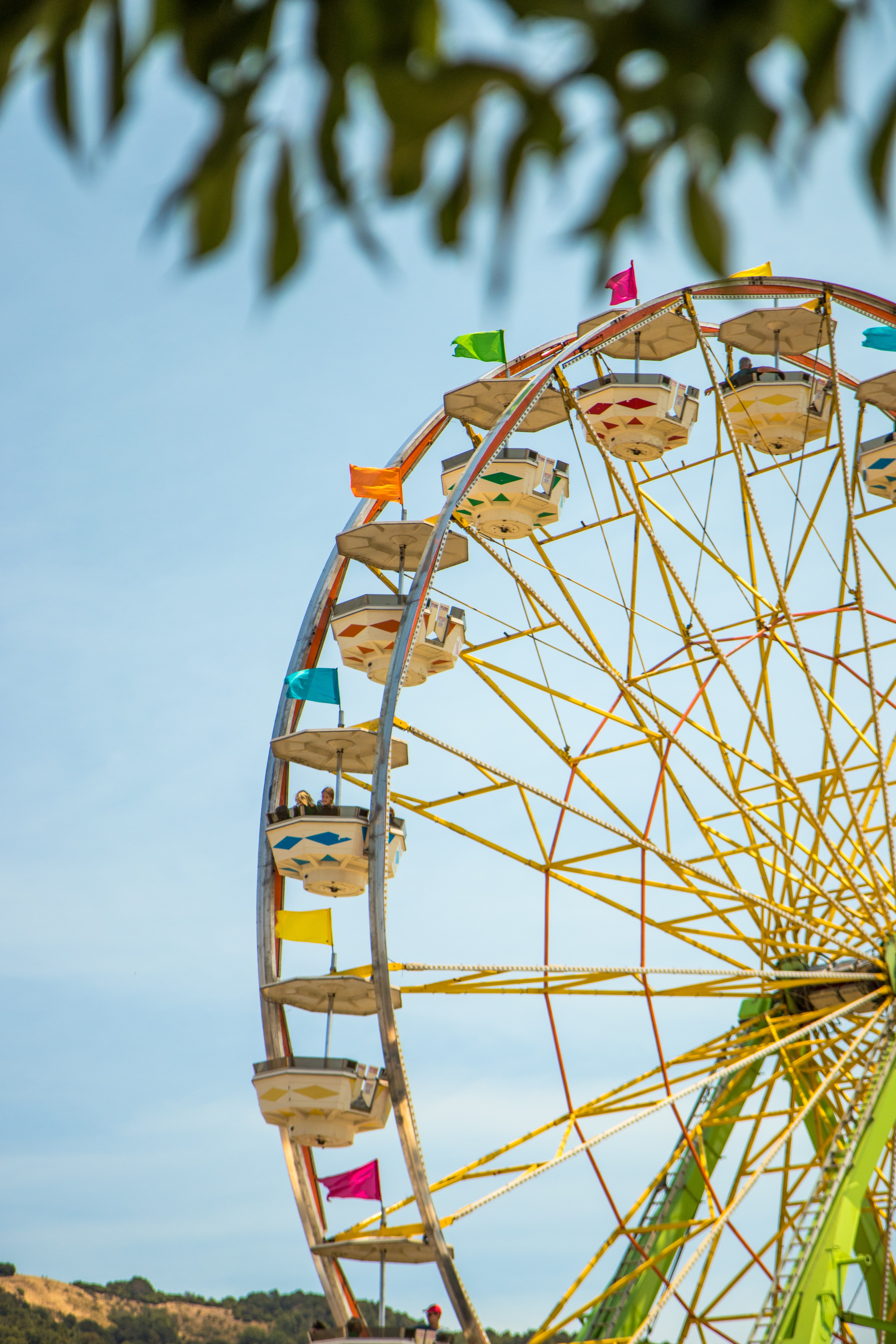 selective focus photography of yellow and green Ferris wheel