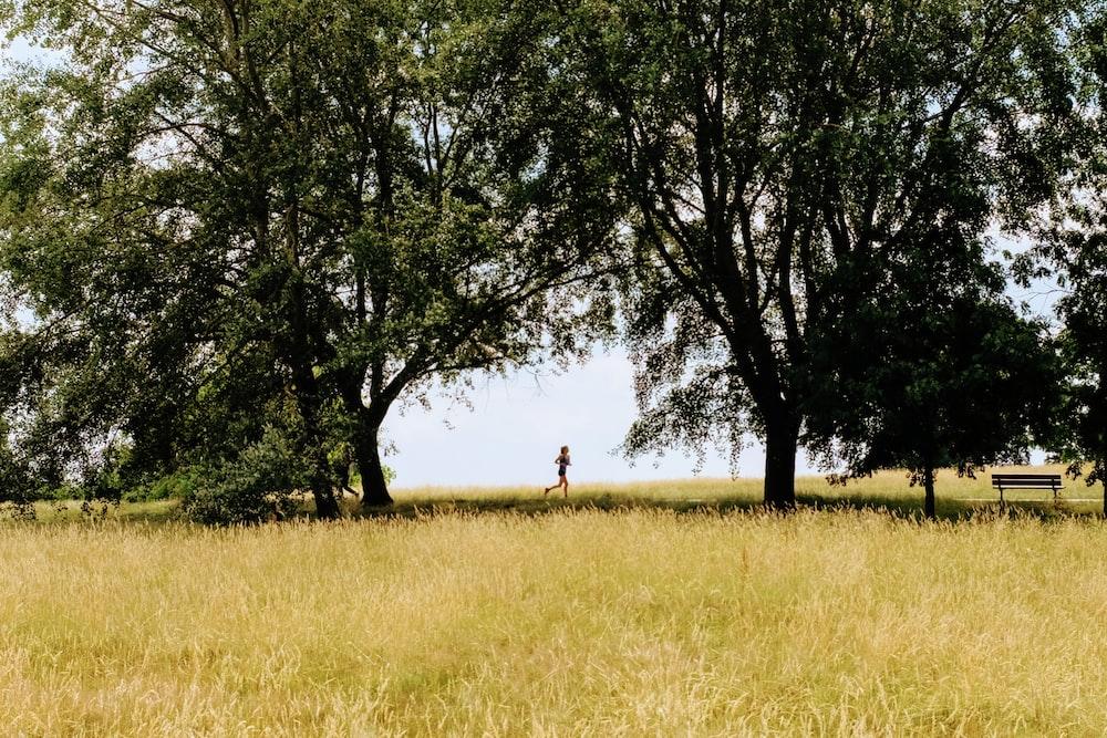 person running on grass field beside tree