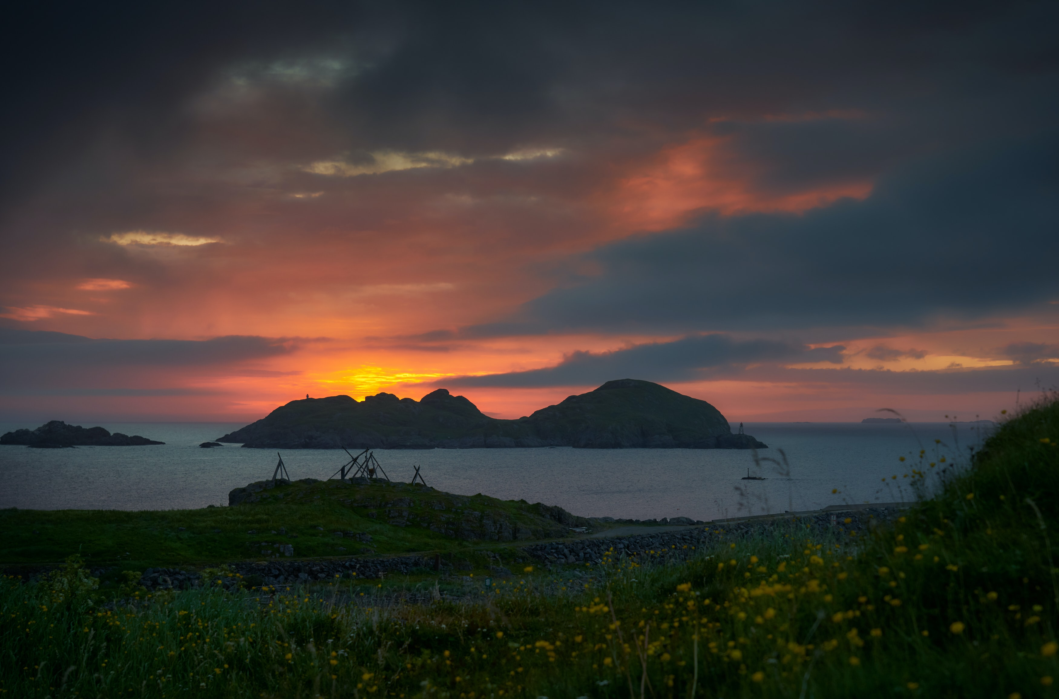 grass field with flower overlooking island in distance during sunset