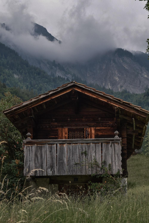 brown house near trees