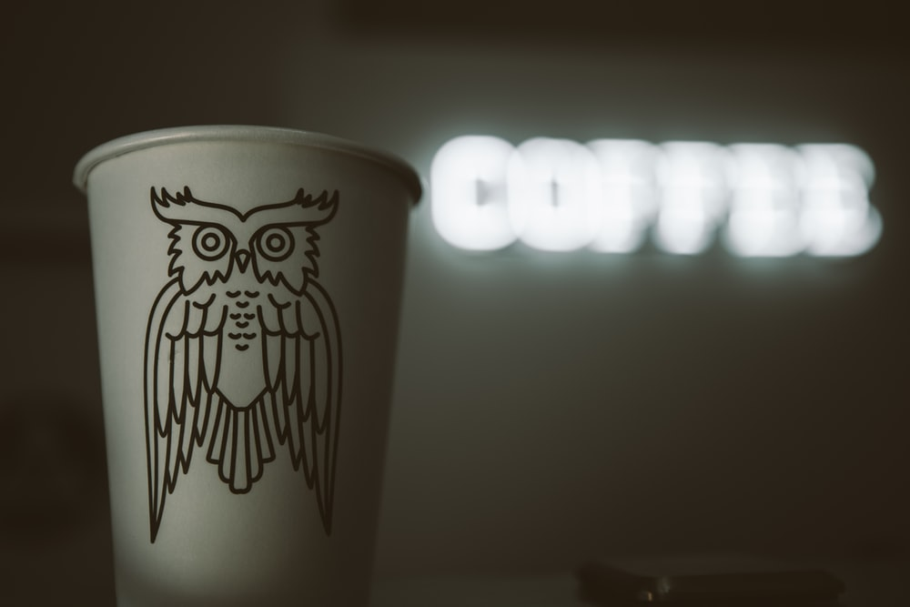 owl printed disposable cup