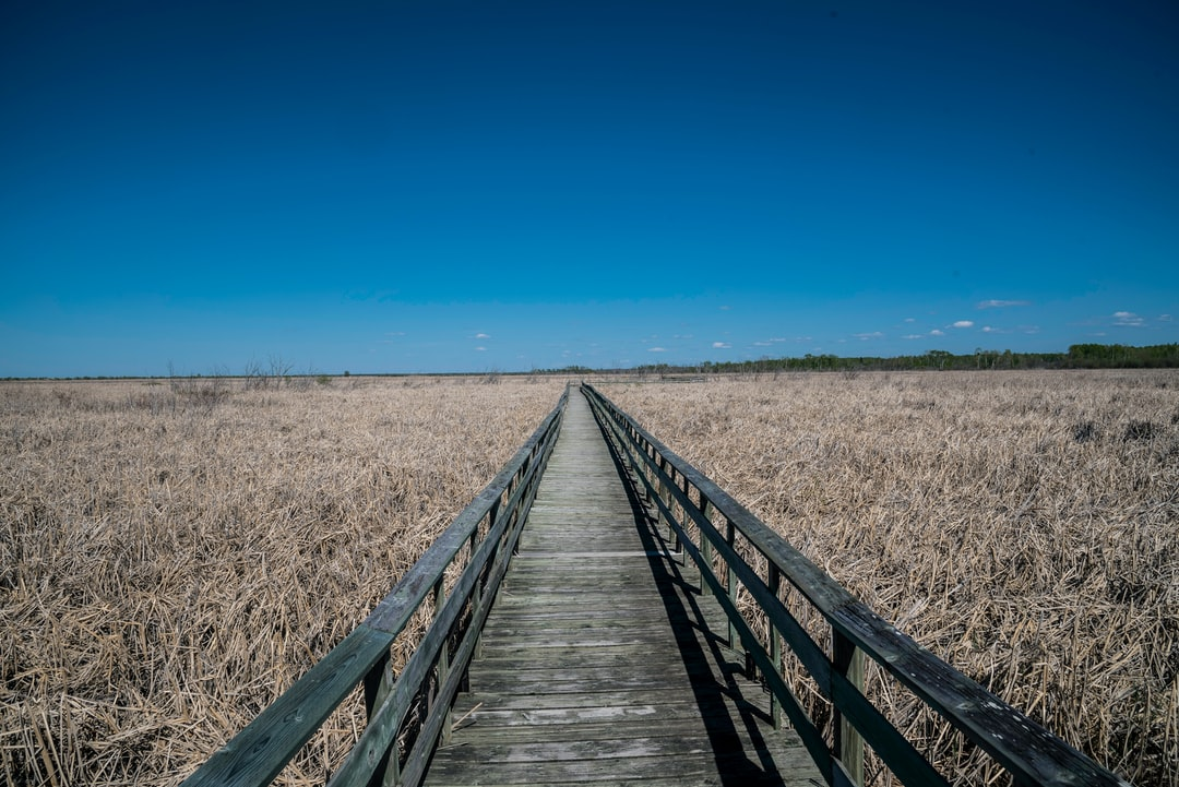 Visiting Winnipeg  and decided to go to Grindstone Provincial Park. This is one of the marsh walks. If you use this photo, please consider crediting https://www.goodfreephotos.com , not require, but very much appreciated.