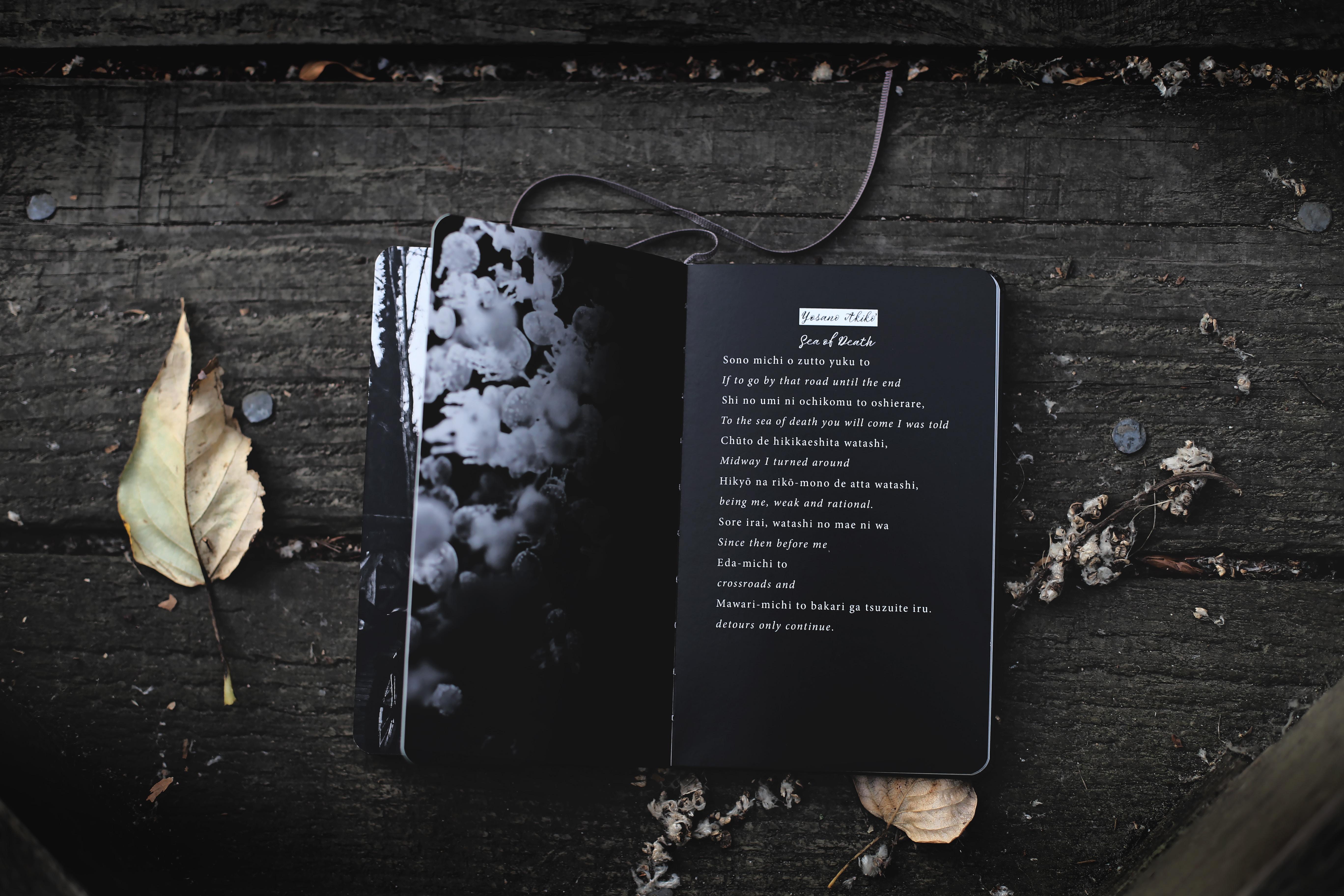 black audio book