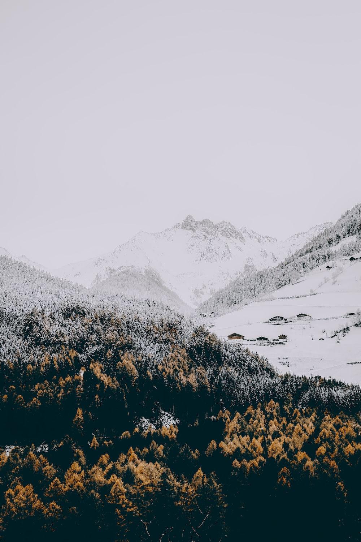 person taking photo of gray mountain