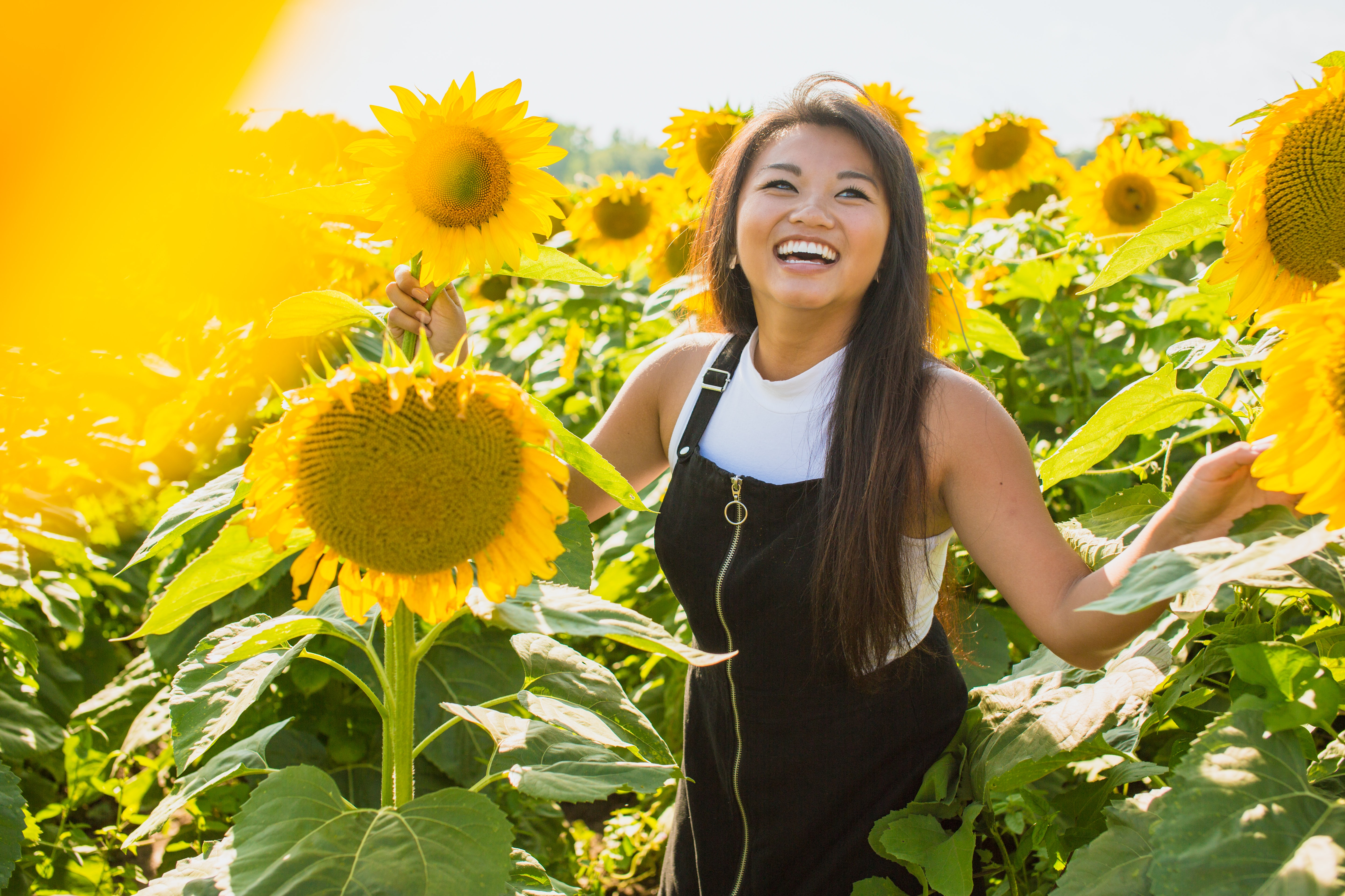 woman surrounded with sunflowers at daytime