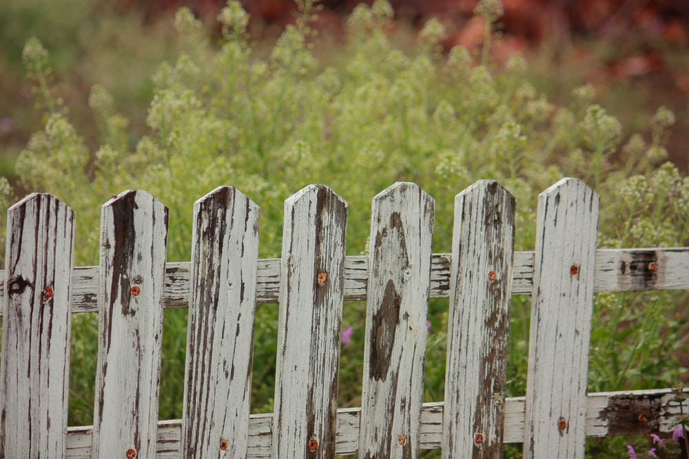 selective focus photography of wooden fence
