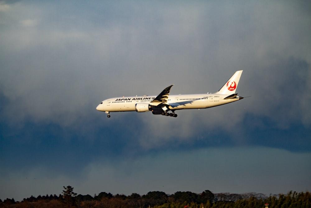 white transportation plane
