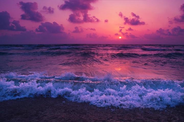 Purple Dream, Black Book