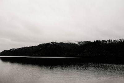 body of water near trees noir zoom background