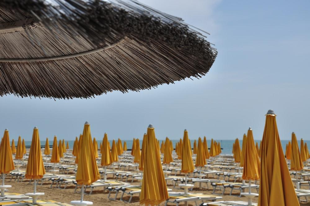 yellow beach umbrellas