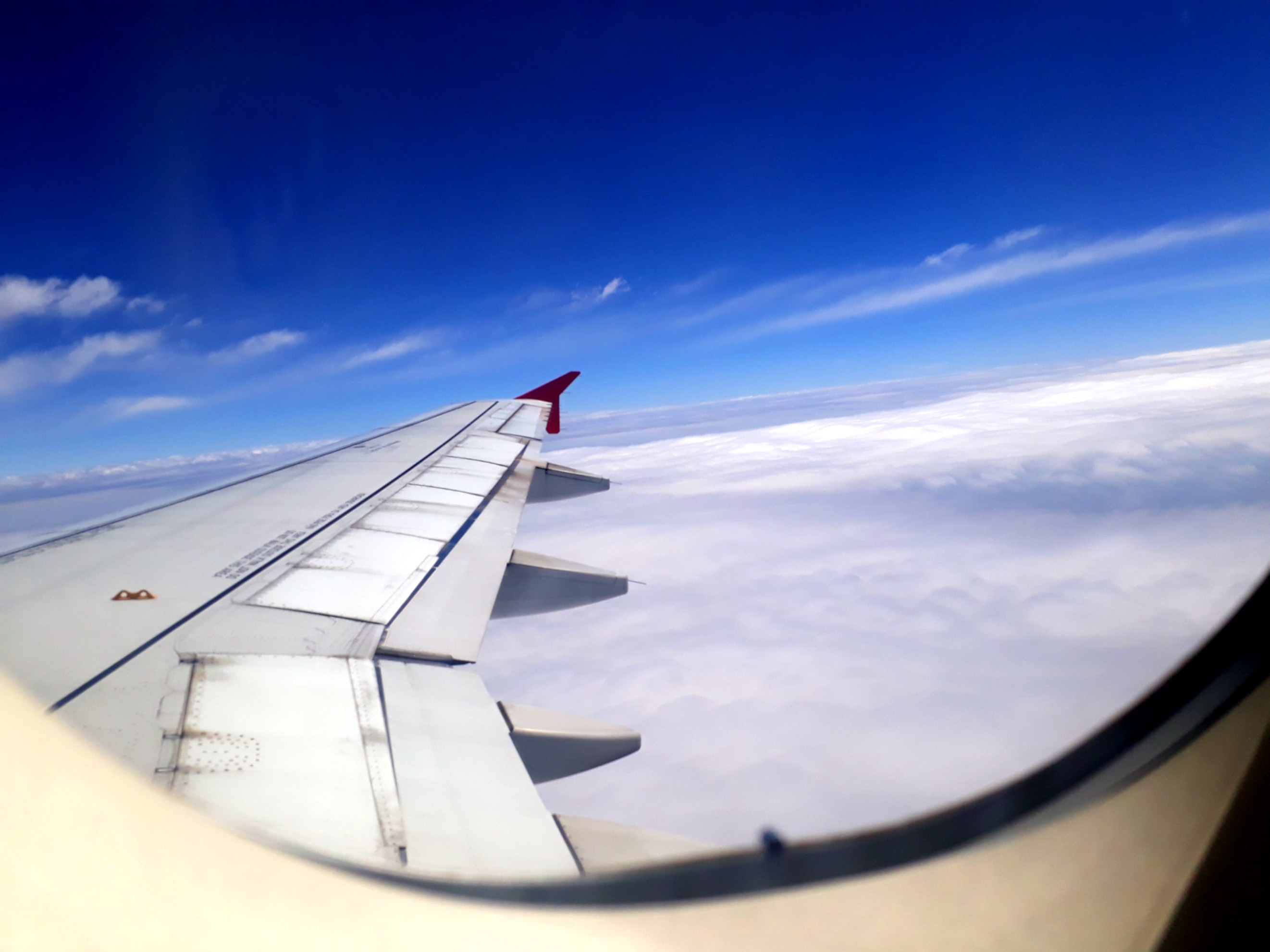 gray commercial airplane wing