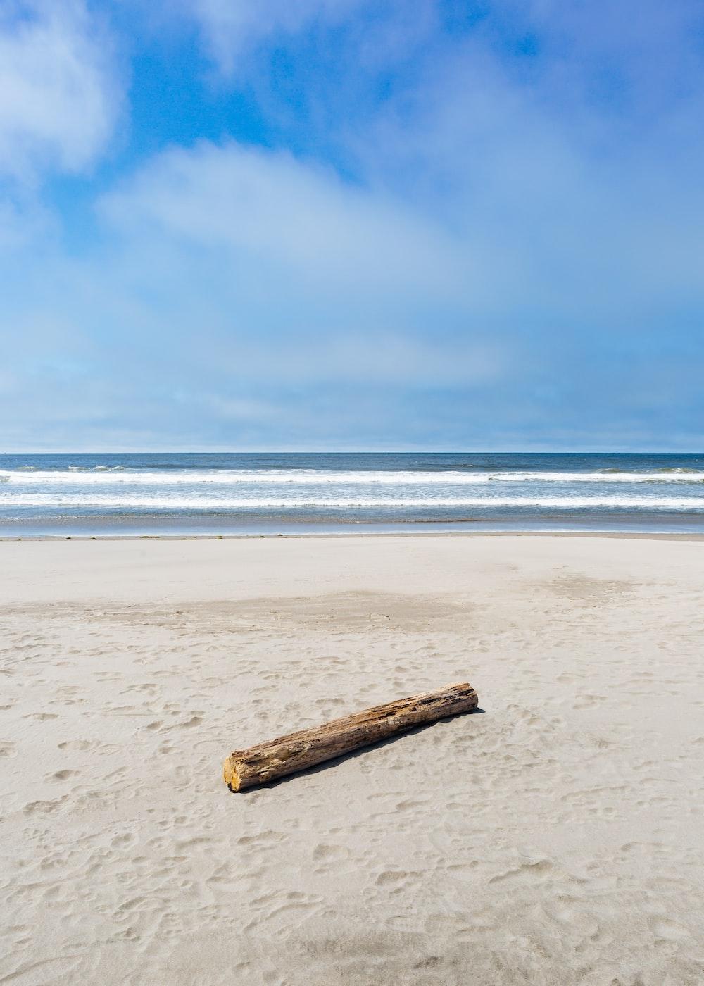 brown driftwood on seashore near beach