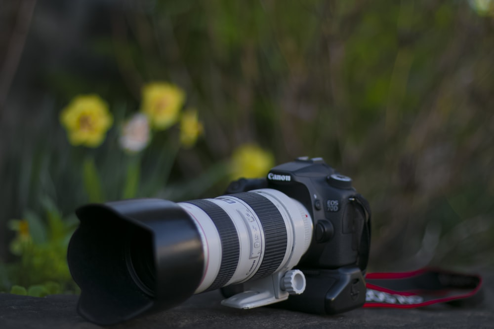 black Canon DSLR camera near yellow flowers