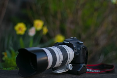 black canon dslr camera near yellow flowers canon teams background