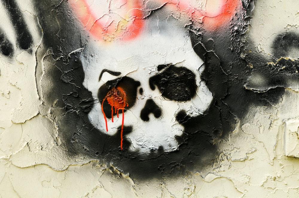 close-up photo of human skull illustration