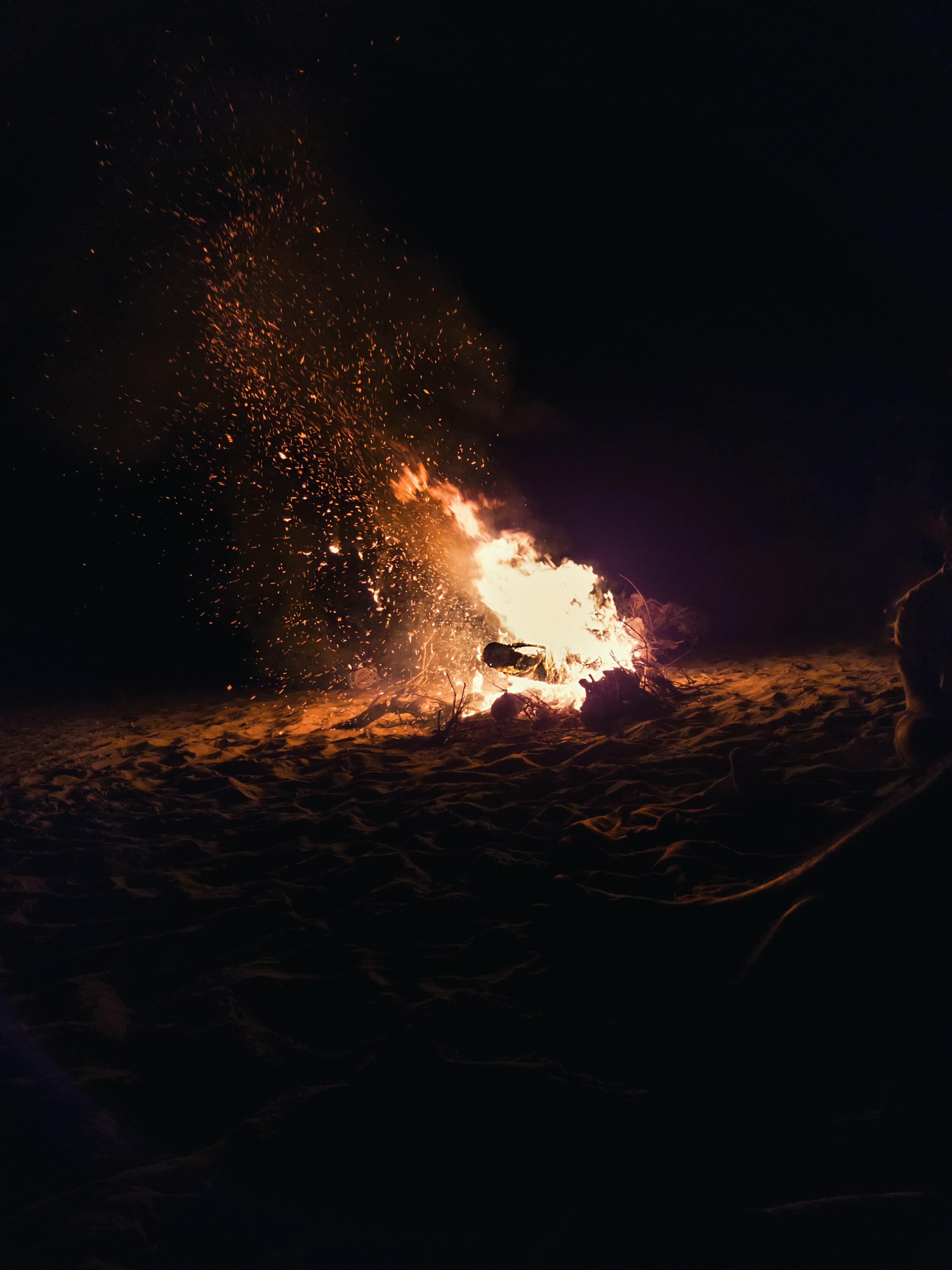burning bonfire on beach shore
