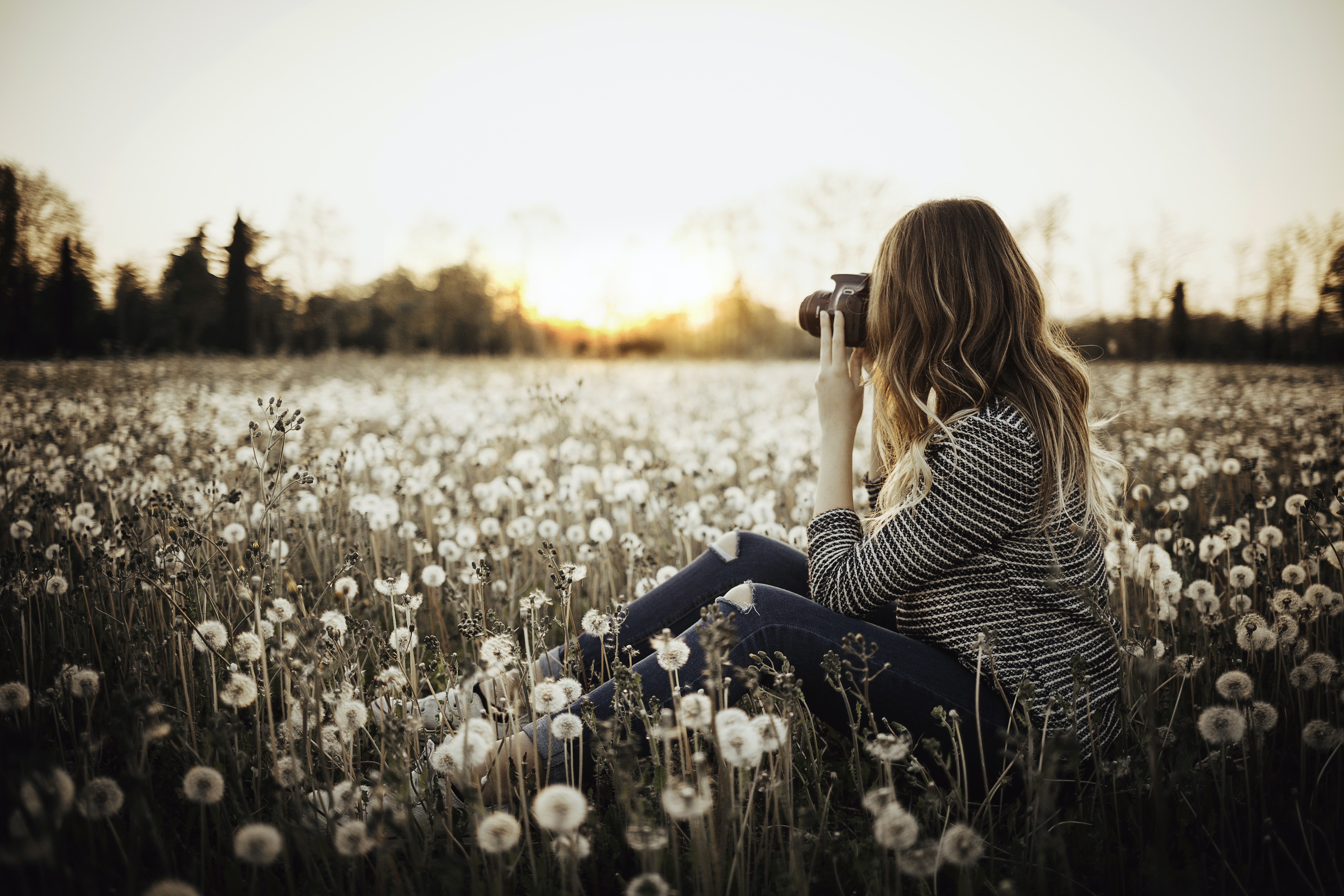 woman sitting on flower field taking photo of trees