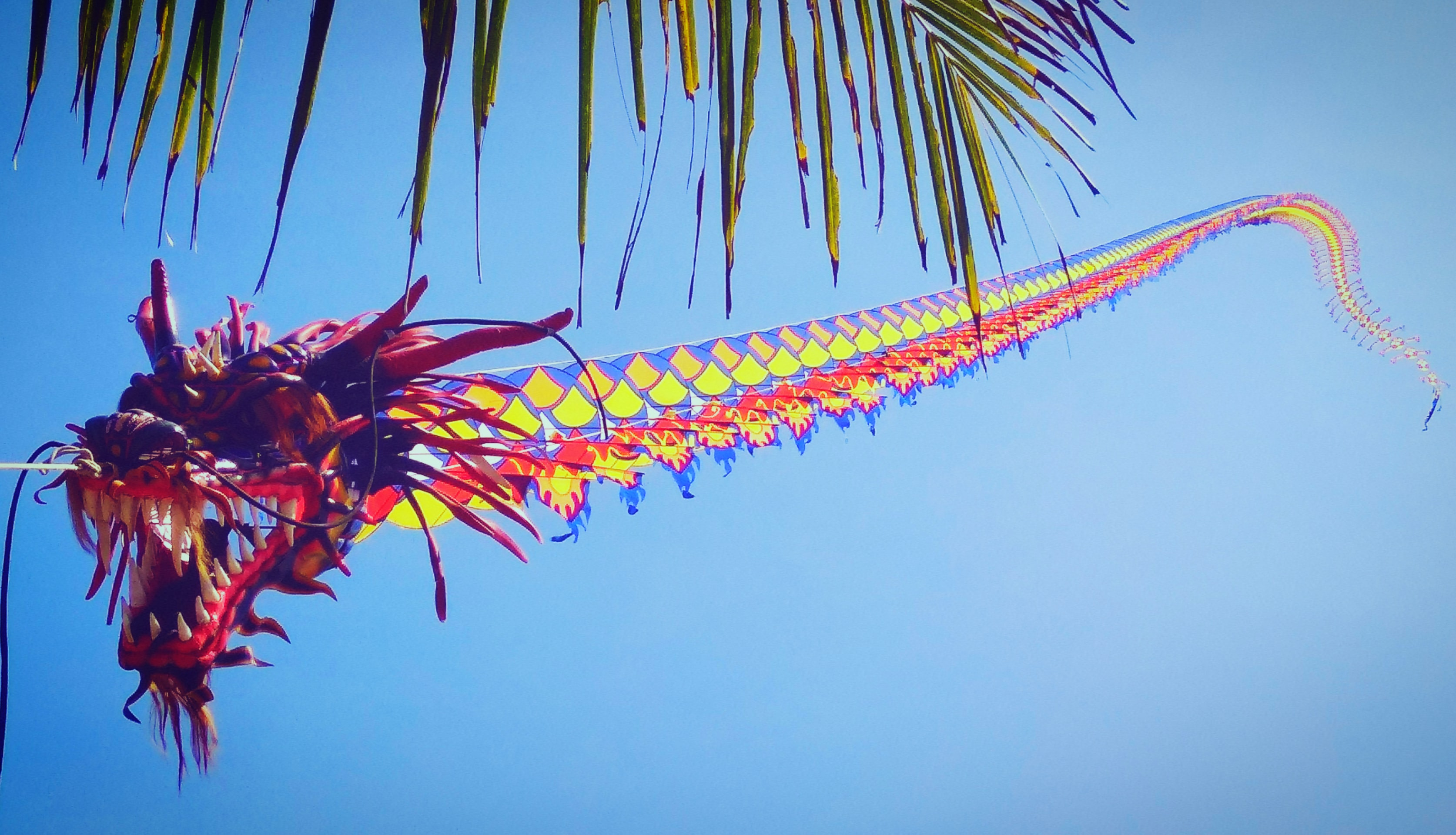 Chinese dragon kite flying in the sky