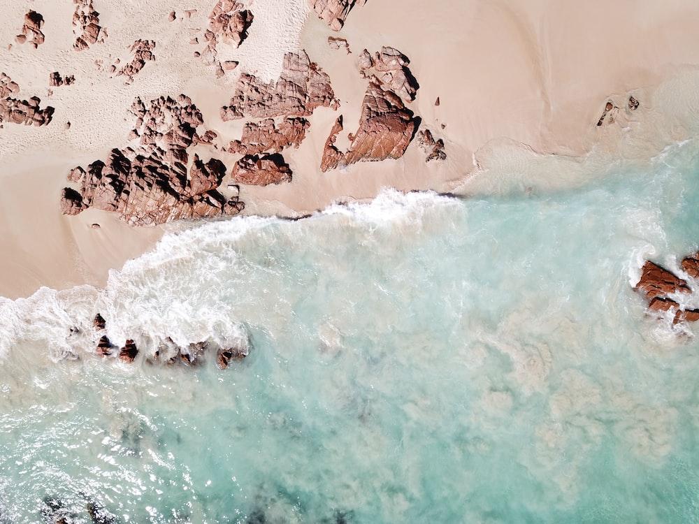 aerial view of ocean and seashore
