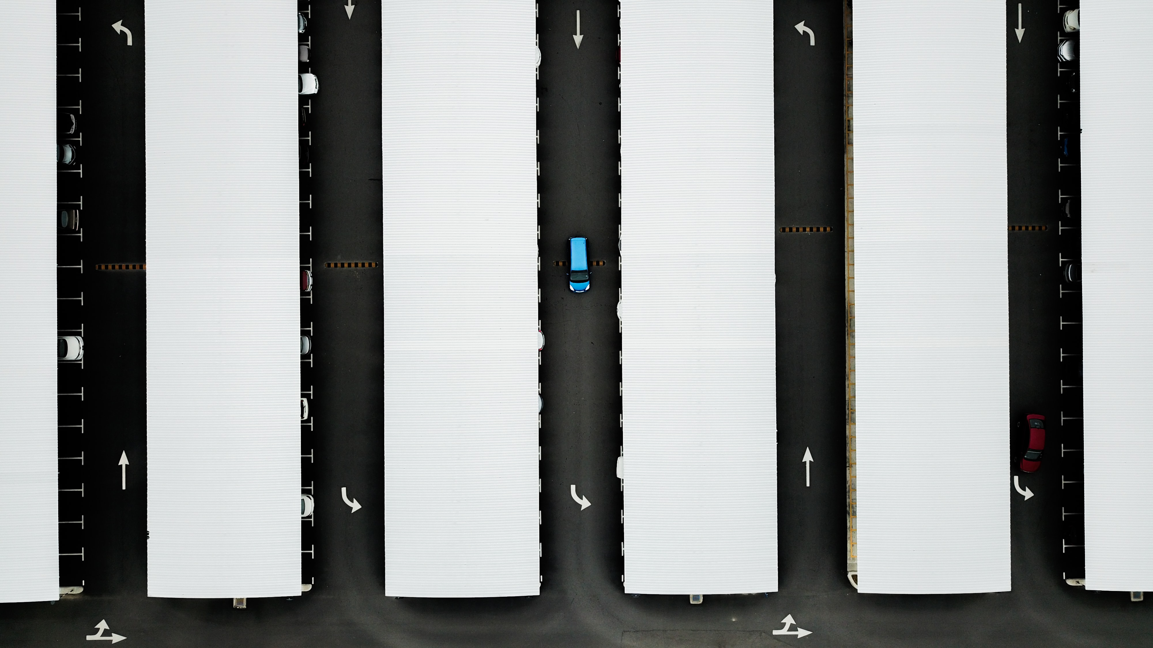 top-view photography of white containers