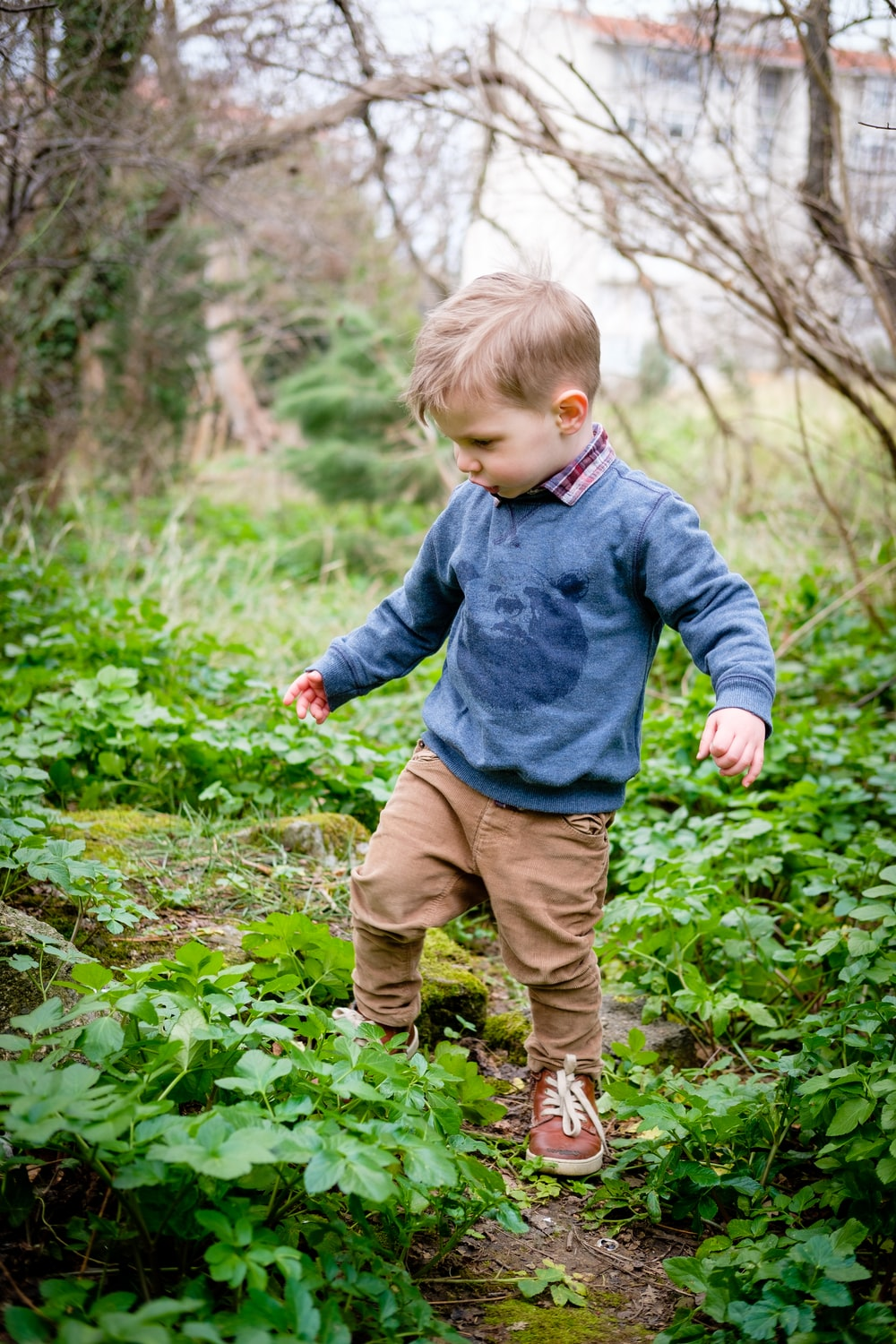 boy standing on green plants