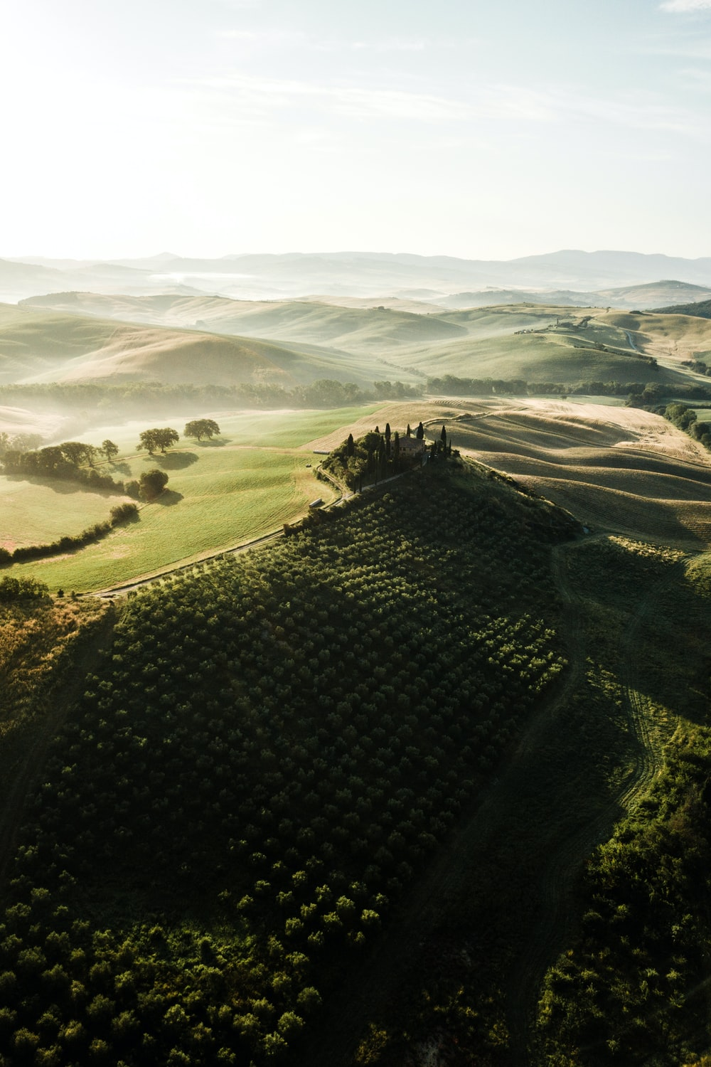 aerial photography of green fields