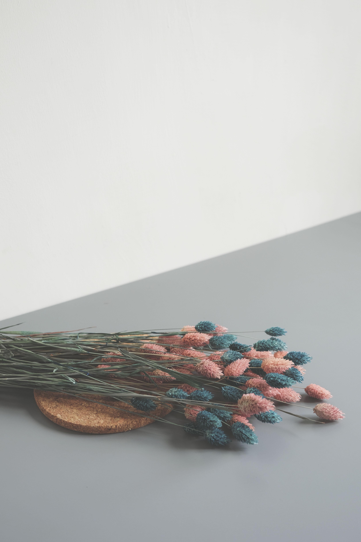 pink and blue petaled flowers arrangement
