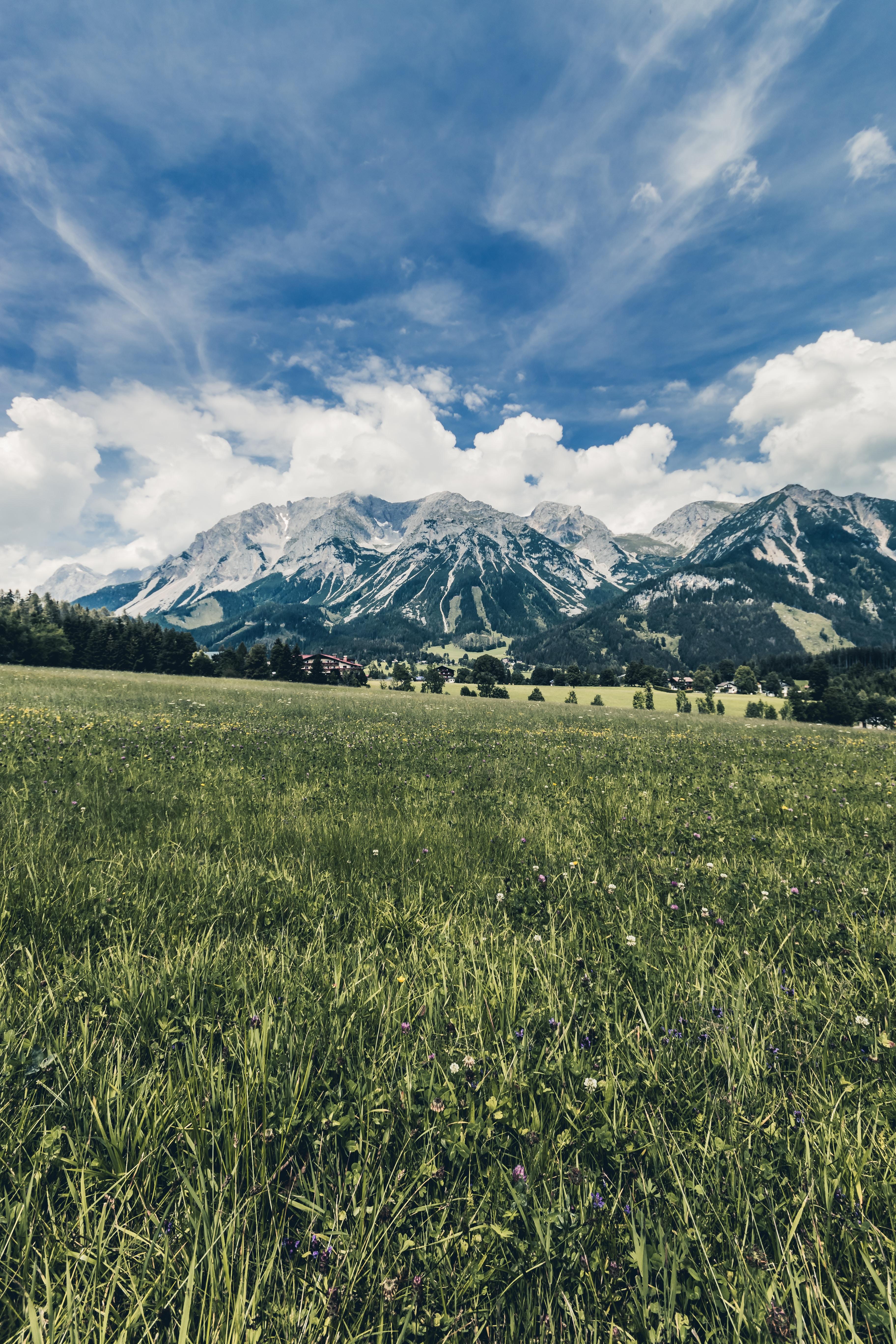 snow capped mountain near grass field
