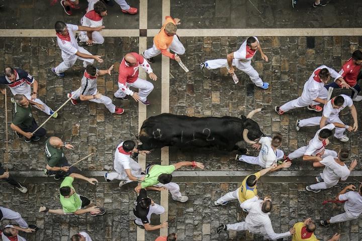 Trip to Pamplona