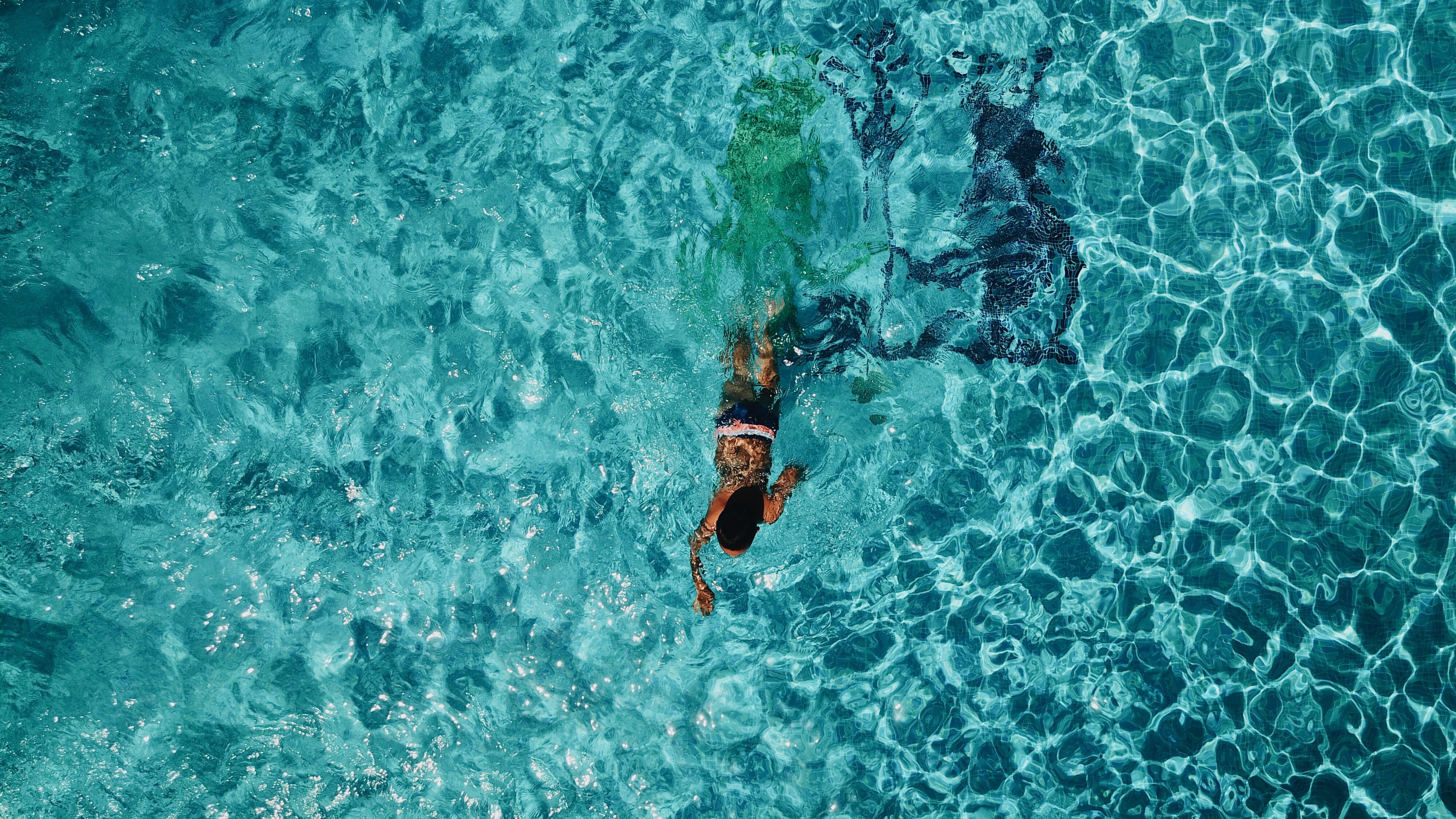 person swimming on body of water