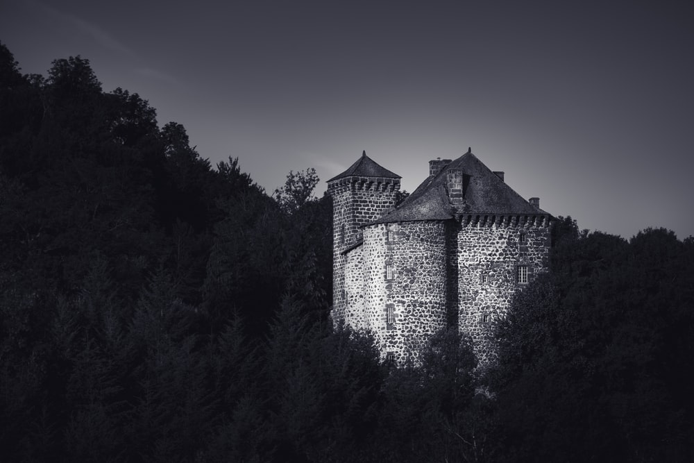 grayscale photography of castle surrounded with trees