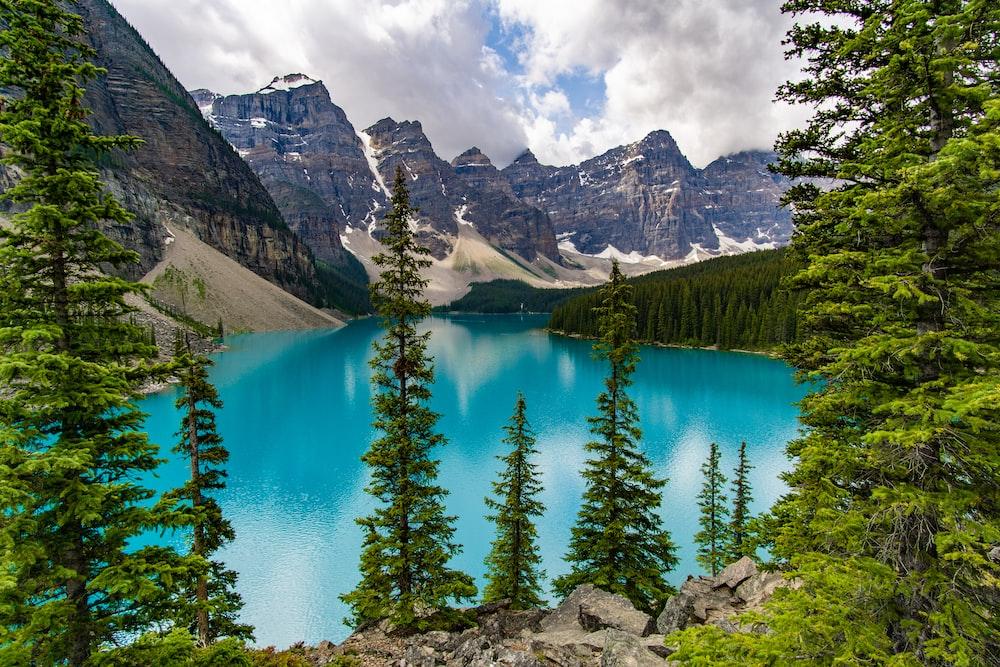 lake, mountains, and trees
