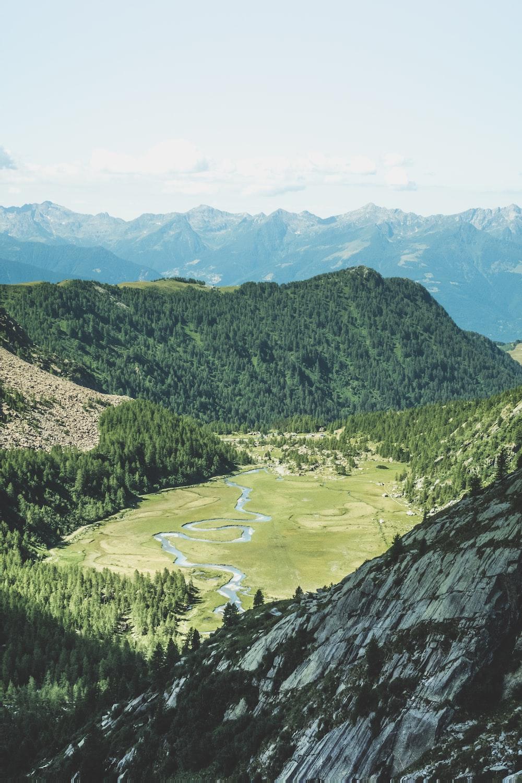 river between green grass field