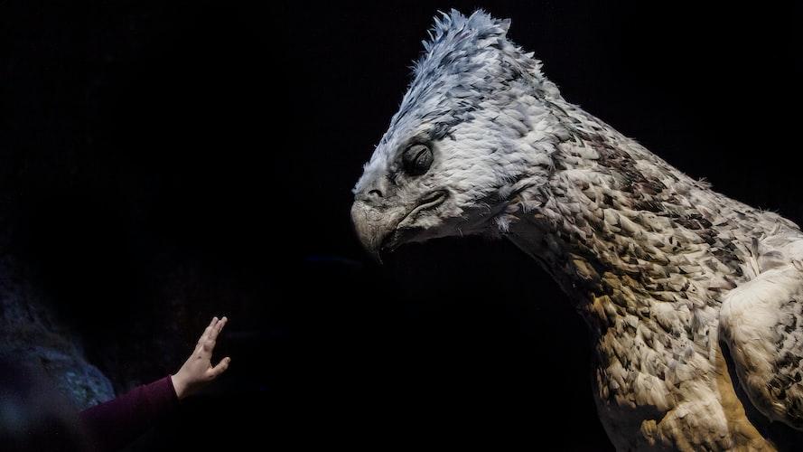 eagle-headed monster