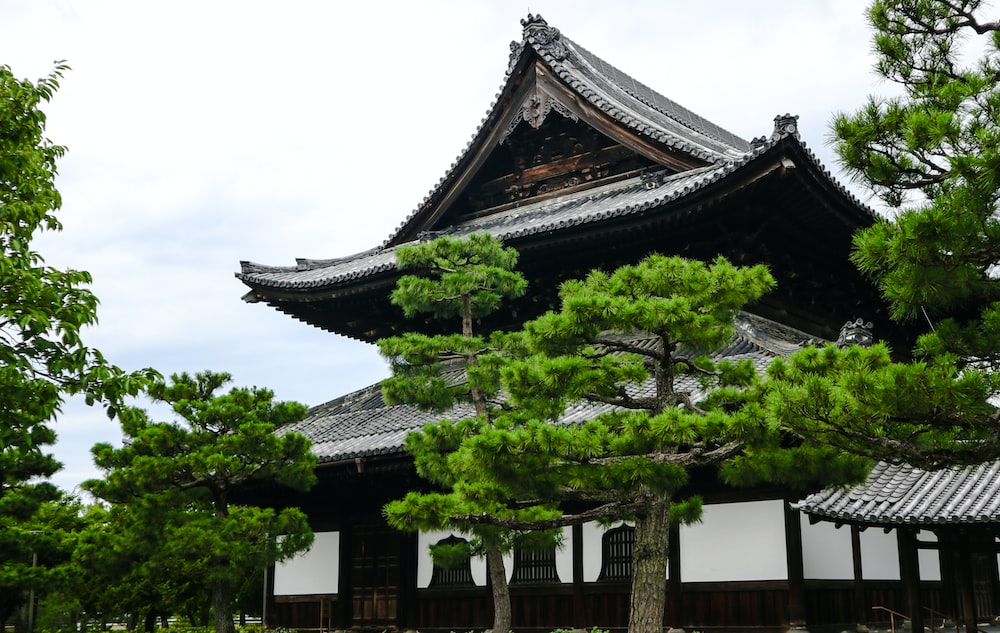 trees and temple