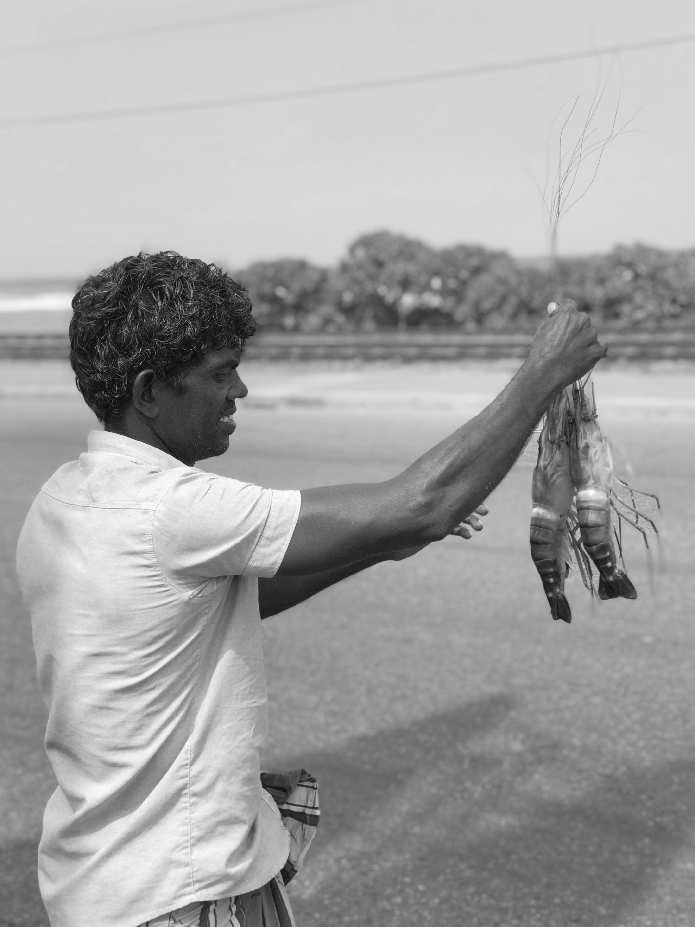 man holding shrimps on shore grayscale photography