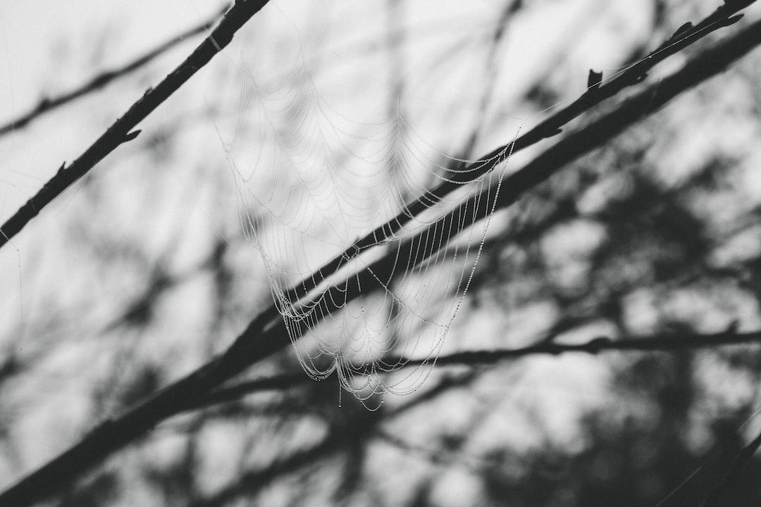 web of drops